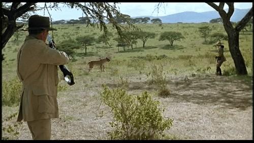 ライオンに睨まれてるカレン
