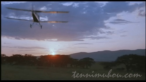 飛行機で空を飛ぶデニス