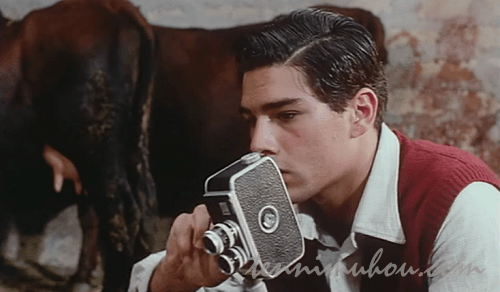 ムービーカメラで撮影をするトト