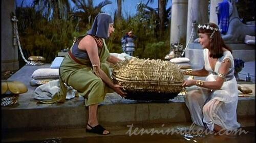 メムネットと共に籠を拾い上げるビシア