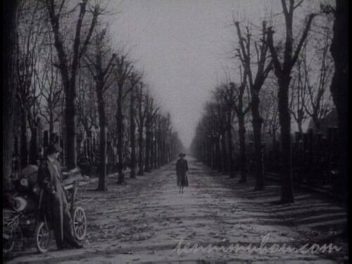 第三の男のラストシーンの並木道