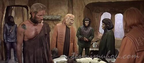 猿に捕まったテイラー